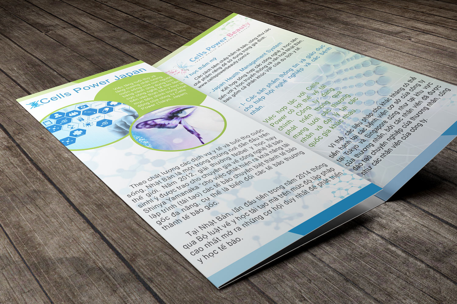 trifold9